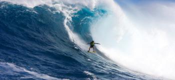 Jaws : Les mâchoires de l'océan